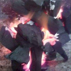 فحم الشعلة